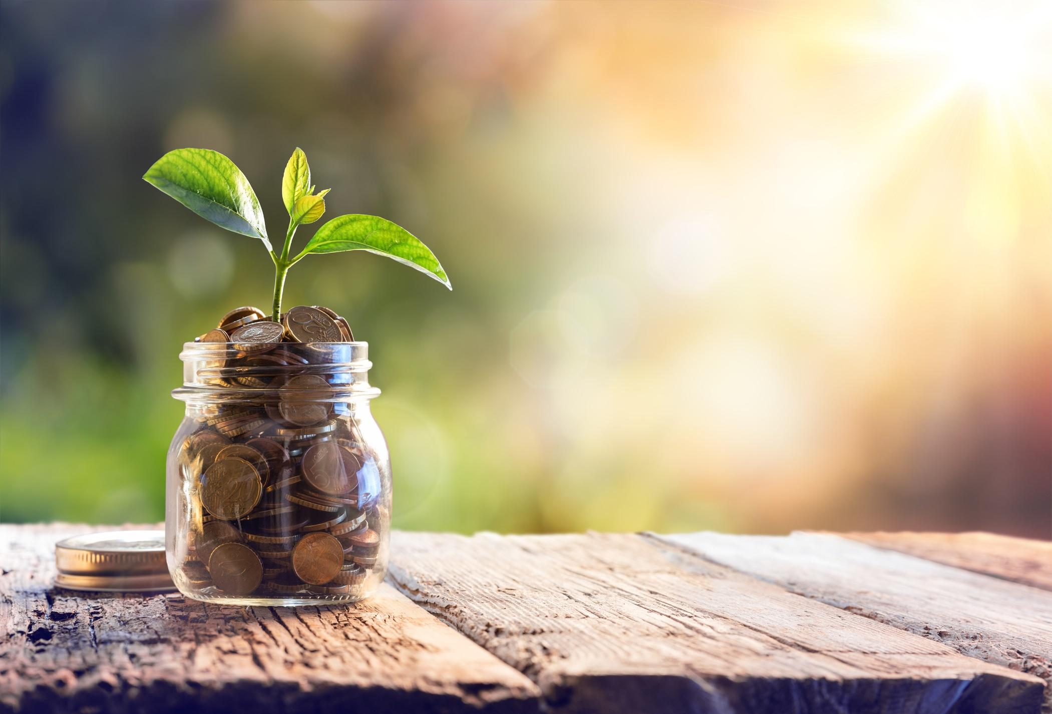 Friesland Bank spaarrente - informatie over de